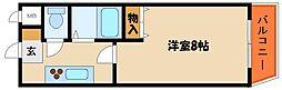 兵庫県明石市魚住町鴨池の賃貸マンションの間取り