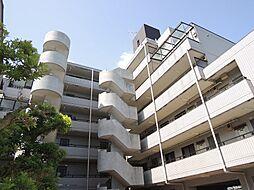 稲田堤グランドハイツ[302号室]の外観
