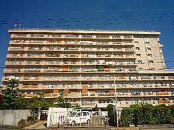 シャンボール茨木[10階]の外観