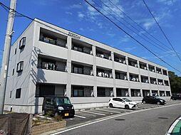アイランドM 3階[307号室]の外観