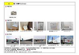 埼玉県坂戸市片柳の賃貸マンションの外観