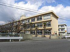 小学校平岡南小学校まで363m