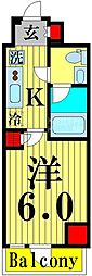 GENOVIA綾瀬sky garden 10階1Kの間取り