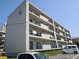 白浜マンション[k420号室]の外観