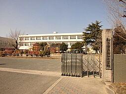 知多市立新知小学校 徒歩 約7分(約550m)