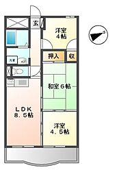 ラコー13[11階]の間取り