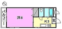 和泉マンション[203 号室号室]の間取り