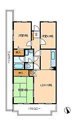 千葉県松戸市新松戸南3丁目の賃貸マンションの間取り