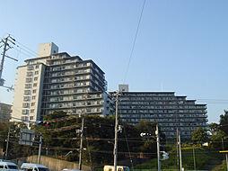 ルネ須磨[11階]の外観