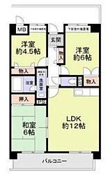 兵庫県西宮市越水町の賃貸マンションの間取り