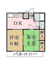 埼玉県草加市松江6丁目の賃貸マンションの間取り