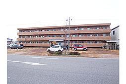 新潟県新潟市東区空港西1丁目の賃貸マンションの外観