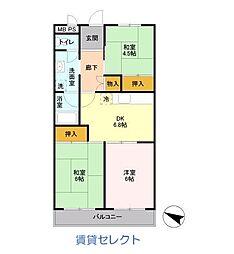 グリーンキャピタル石井[302号室]の間取り