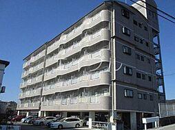 DRハウスII[5階]の外観