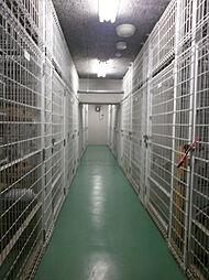 建物地下には各戸指定のトランクルームがあり、レジャー用品などの収納にも便利です