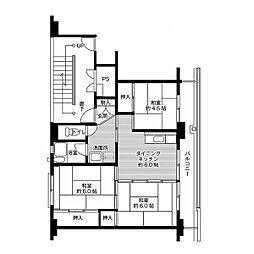 ビレッジハウス小名浜2号棟 5階3DKの間取り