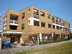 グリーンコート西田[306号室]の外観