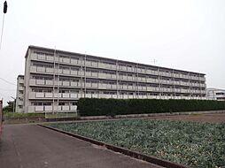 ビレッジハウス松山上野[107号室号室]の外観