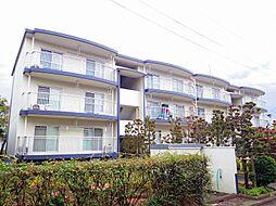 東京都東大和市南街3丁目の賃貸マンションの外観