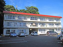 ビーチサイドマンション[1階]の外観