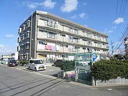 三重県鈴鹿市南江島町の賃貸マンションの外観