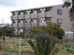ビディエスTAMAGAKIマンション[1階]の外観