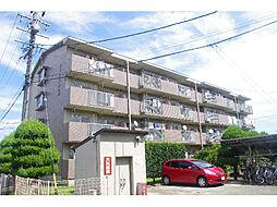 愛知県丹羽郡大口町下小口1丁目の賃貸マンションの外観