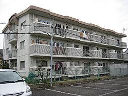 野白ガーデンハイツ[2階]の外観