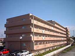 ブロッサムガーデン利平治[3階]の外観