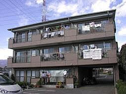 ロイヤルプラザ米山B[2階]の外観