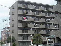 ベルシャイン竹原B棟[4階]の外観
