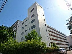 新潟駅南ハイツ[5階]の外観