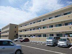 新潟県新潟市中央区女池西2丁目の賃貸マンションの外観