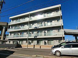 新潟県新潟市中央区天神尾1丁目の賃貸マンションの外観