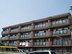 マンションリバーストーン[1階]の外観