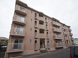 静岡県浜松市中区向宿2丁目の賃貸マンションの外観