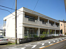 シティハイツワシヅ[2階]の外観
