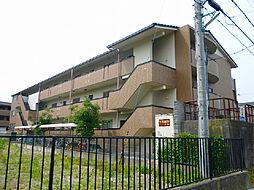 滋賀県東近江市沖野1丁目の賃貸マンションの外観
