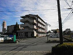 メゾンドセルリア[3階]の外観