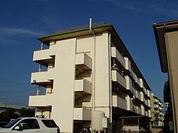 メゾンソレイユ[2階]の外観