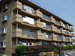 ハイツ塚本[4階]の外観