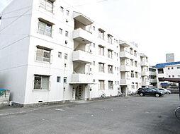 第1福岡ハイツ[203号室]の外観