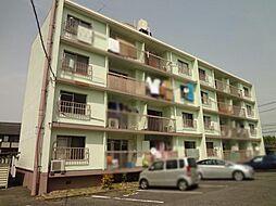 岩崎ハイツ[1階]の外観