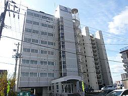 ビッグバーンズマンション[7階]の外観