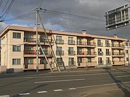 北海道旭川市東二条4丁目の賃貸マンションの外観