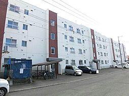横田ハイツ[3階]の外観