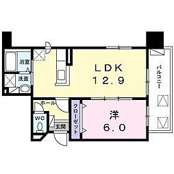 プラシード北円山 5階1LDKの間取り