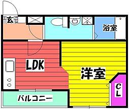 センティーレ和泉 1階1LDKの間取り